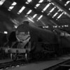 30782 Sir Brian captured during a visit to Bournemouth MPD on 16 August 1955.