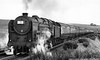 72000 Clan Buchanan down express Shap August 1953