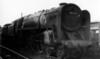 70022 Tornado Newton Abbot 26th August 1956