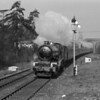 "The special trains to Newbury race meetings provided an interesting subject and the locomotives were always well turned out.  Here 6010 King Charles I is seen at the head of the ""Members' Special"" in 1959 between the Tilehurst and Bath Road bridges."