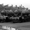Manor Class 7823 Hook Norton Manor and Modified Hall 7902 Eaton Mascot Hall outside Swindon Works in April 1956.