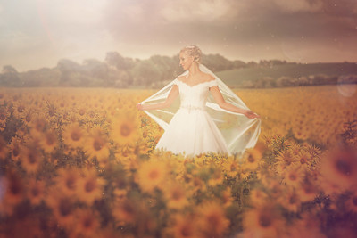Bride sunflowers-Edit