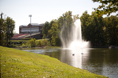 McNeilly: Fall 2008