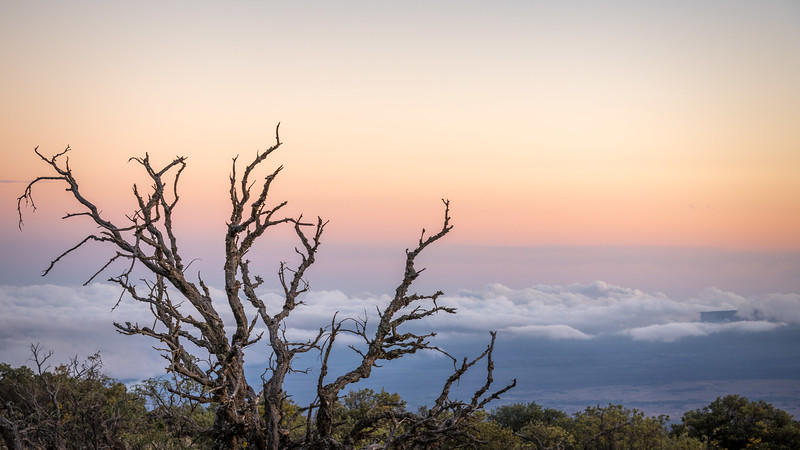 Sunset from above the clouds, Maunakea