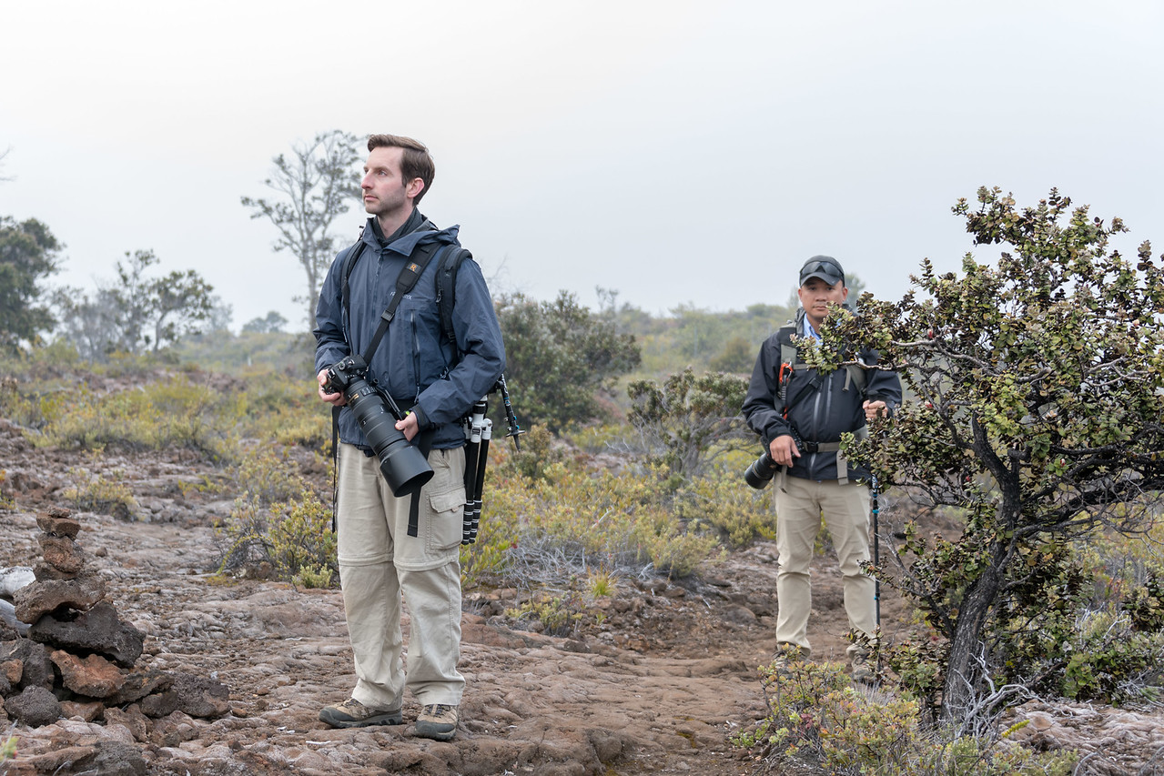 Looking for birds, Maunaloa