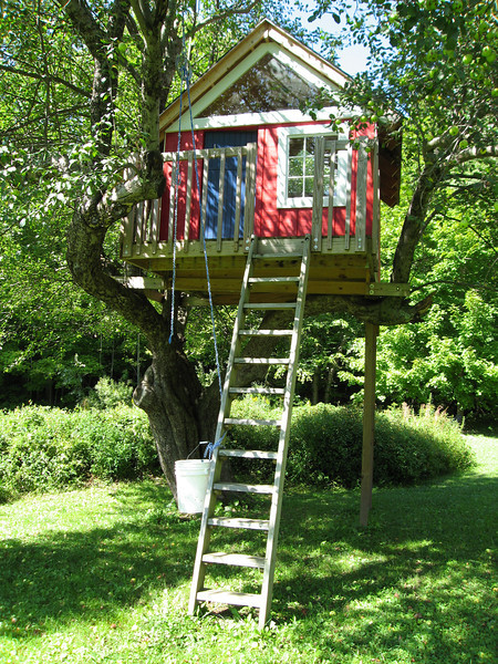 52 MS Treehouse