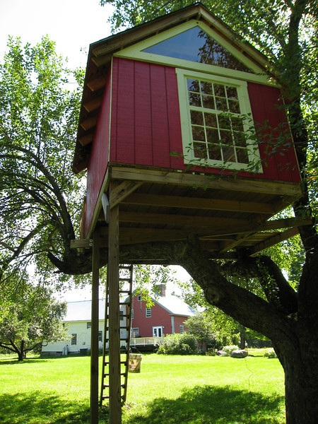58 LS Treehouse and Main House Looking SE