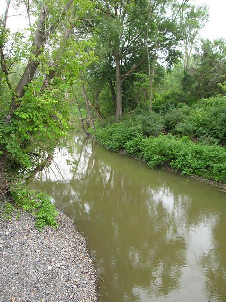 48 Holmes Creek Detail I