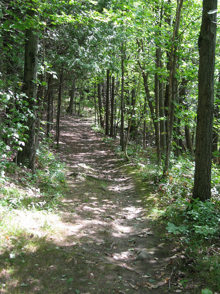 34 Trail from Picnic Area I