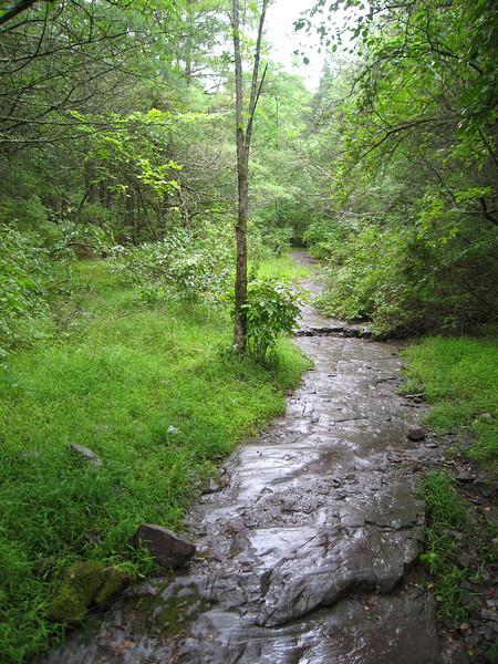 72 Rustic Trail I