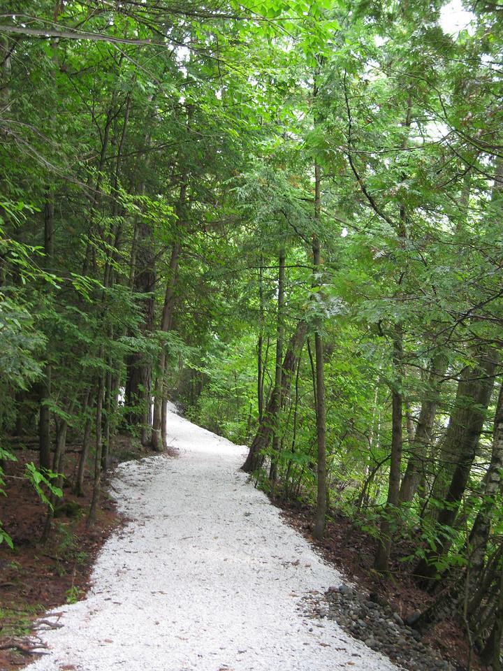 30 White Trail Detail II