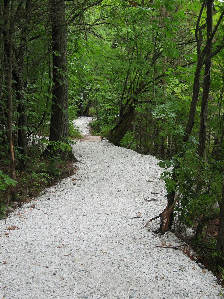 29 White Trail Detail I