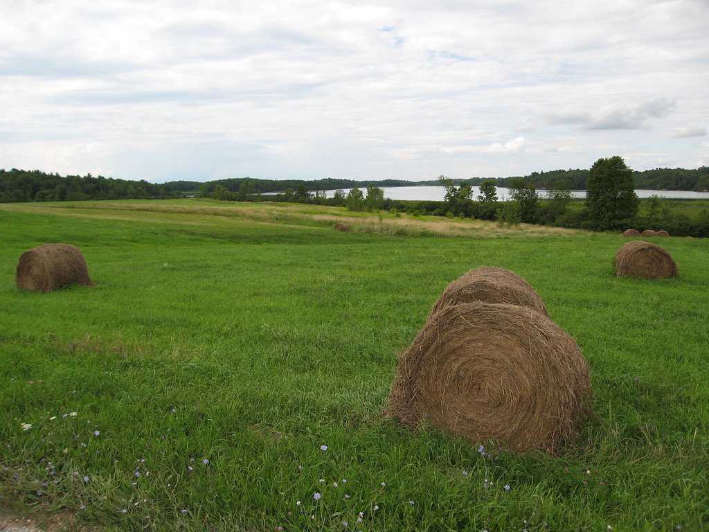 47 Hayfield and Shelburne Pond