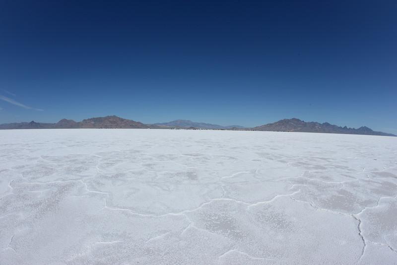 Salt 09 Day 2 808