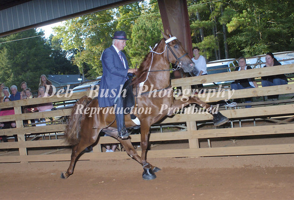 CLASS 6  RIDERS CUP 2 YR OLD