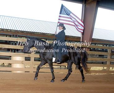 FLAG  HORSE--CANDIDS
