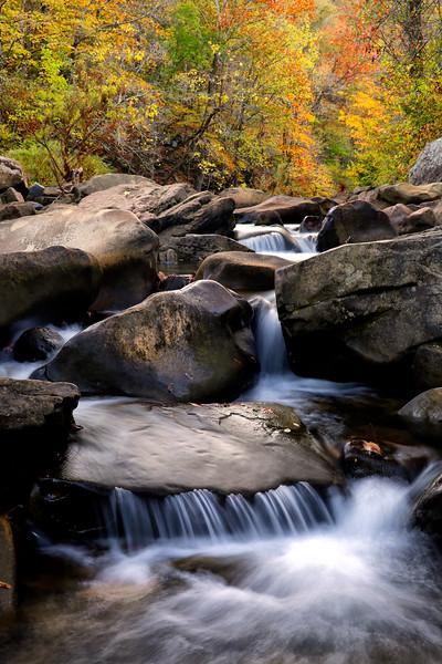 Richland Creek - Fall 2016