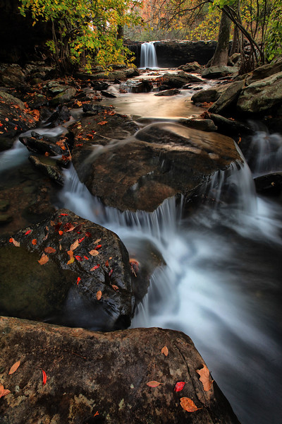 Falling Water Falls in Fall - Richland Creek Area