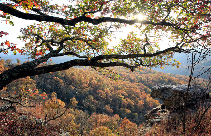 White Rock Recreational Area - Ozark National Forest - Arkansas