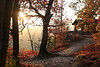 Autumn Glow - White Rock Recreational Area - Ozark National Forest - Arkansas