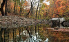 Fall Reflections - Richland Creek - Ozarks
