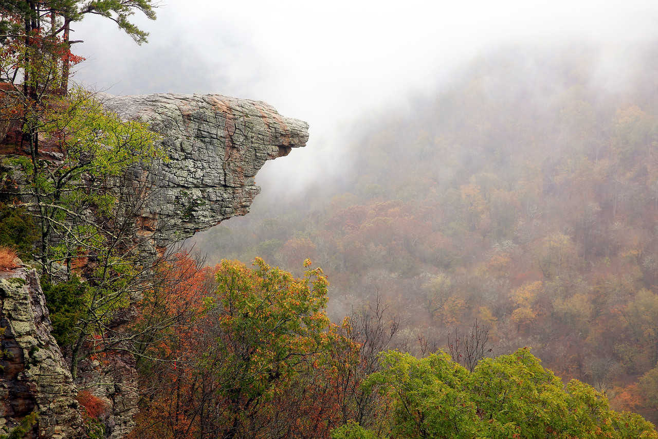 Hawksbill Crag in the Fog - Ponca, Arkansas - Fall 2016