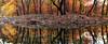 Fall Reflections - Richland Creek Area