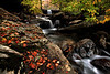Falling Water Falls - Richland Creek Area