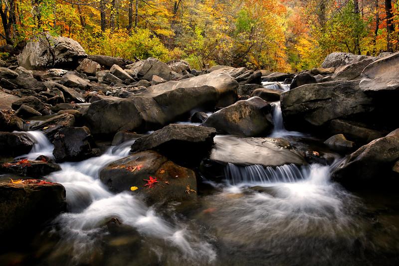 Canvas of Imagination - Richland Creek - Arkansas - Autumn 2016