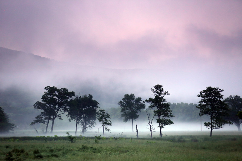 Painted Fog at Sunset - Boxley Valley - Buffalo National River - 2018