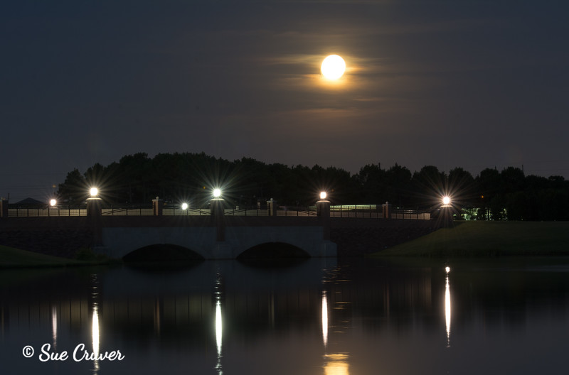 Moon and Light Reflections
