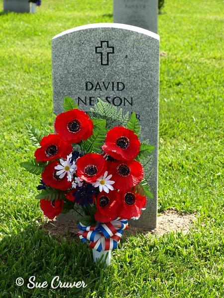 A Veteran's Day