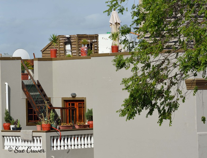 Bo Kapp Roof Garden