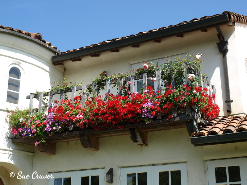Flowered Balcony