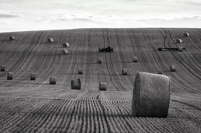 HAY BALES IN BURGUNDY