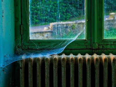 Radiator and cobwebs