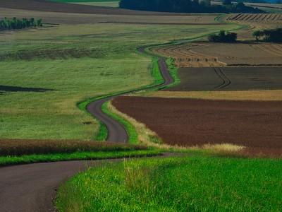 Burgundian landcape and road