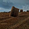 Bales of Hay in Burgundy