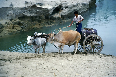 FETCHING WATER - AYARWADDY RIVER