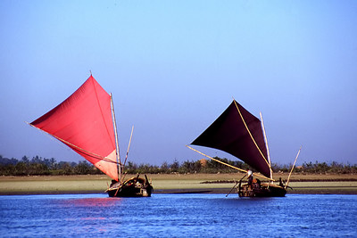 DHOWS - BAY OF BENGAL
