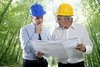 engineer architect two expertise team plan forest