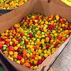 Local little peppers in Riteway