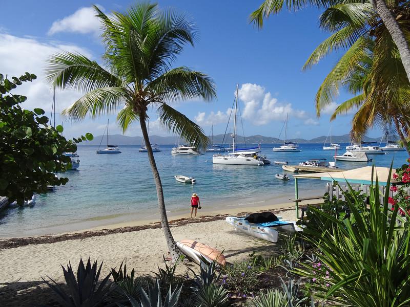 Manchioneel Bay, Cooper Island