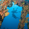 RMS Rhone - divers through mid section