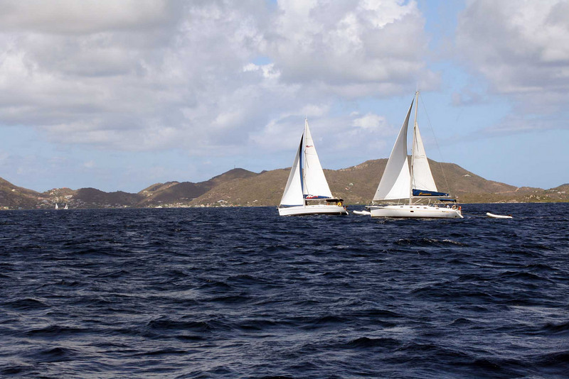 Bread and butter for the BVIs. There's over 600 sailing boats for charter here.