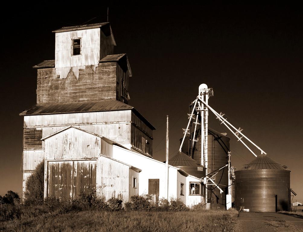 Vona Grain
