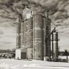 Waterloo Grain