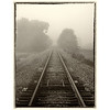 Foggy Railroad Tracks