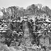 LaRue-Pine Hills - Winter
