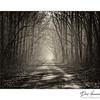 """Snake Road""   LaRue-Pine Hills"